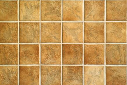 This is a picture of a ceramic tile.